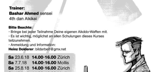 Dan Trainings mit Bashar Ahmed Sensei