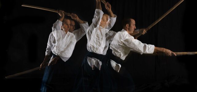 Aikido in motion